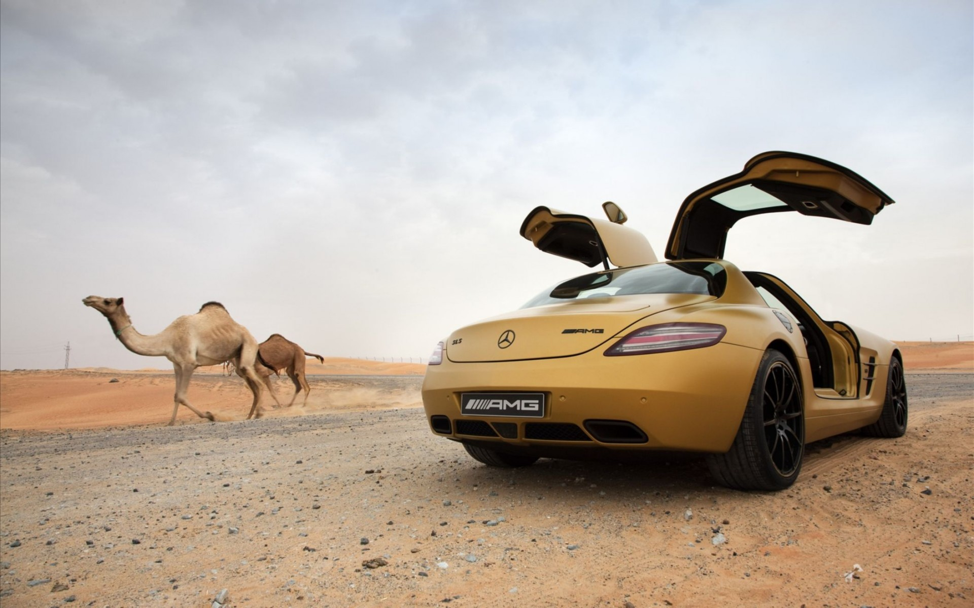 2010 Mercedes Benz Sls Amg Desert Gold 8 Wide Wallpaper