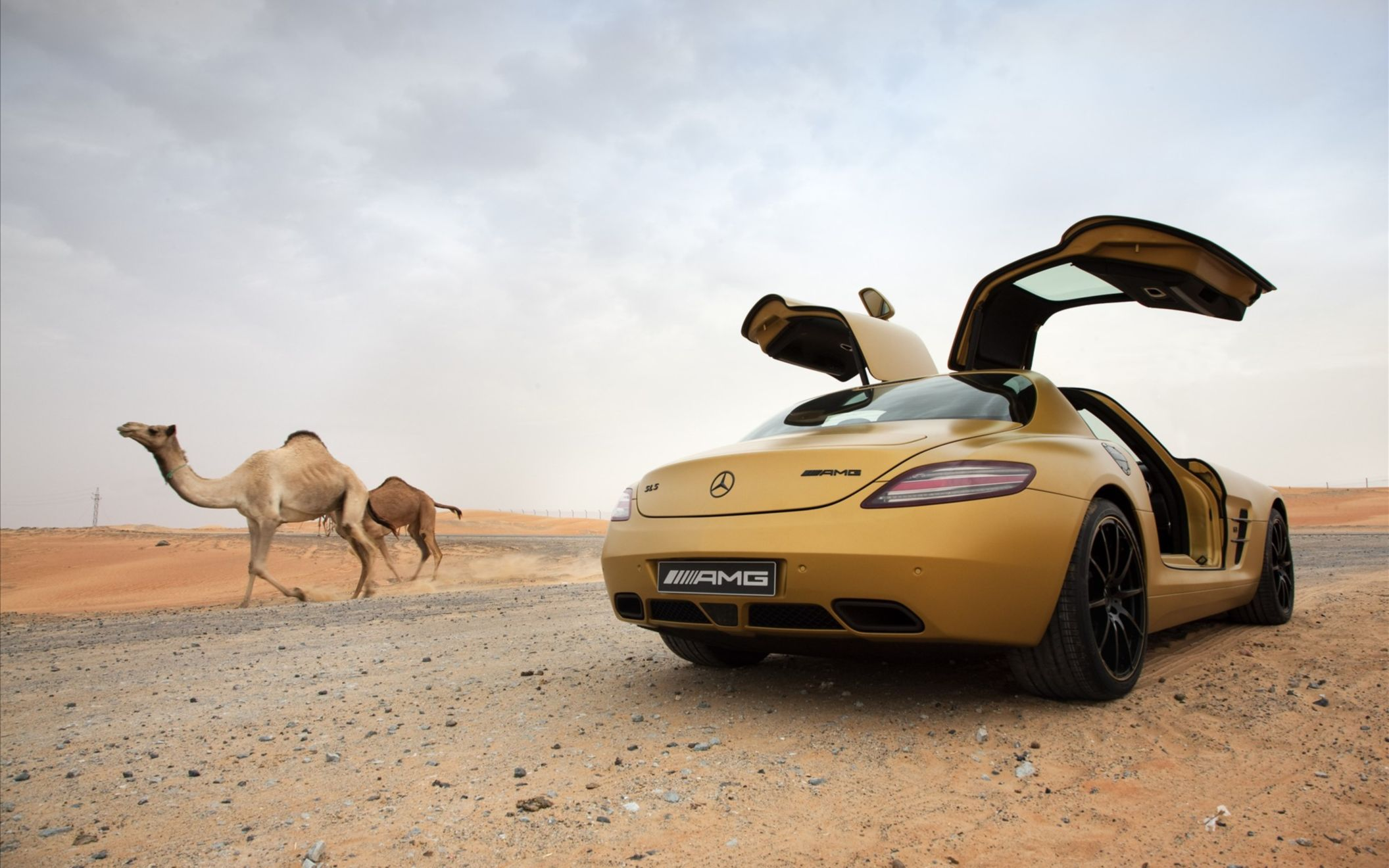 Download free HD 2010 Mercedes Benz Sls Amg Desert Gold 8 Wide Wallpaper, image