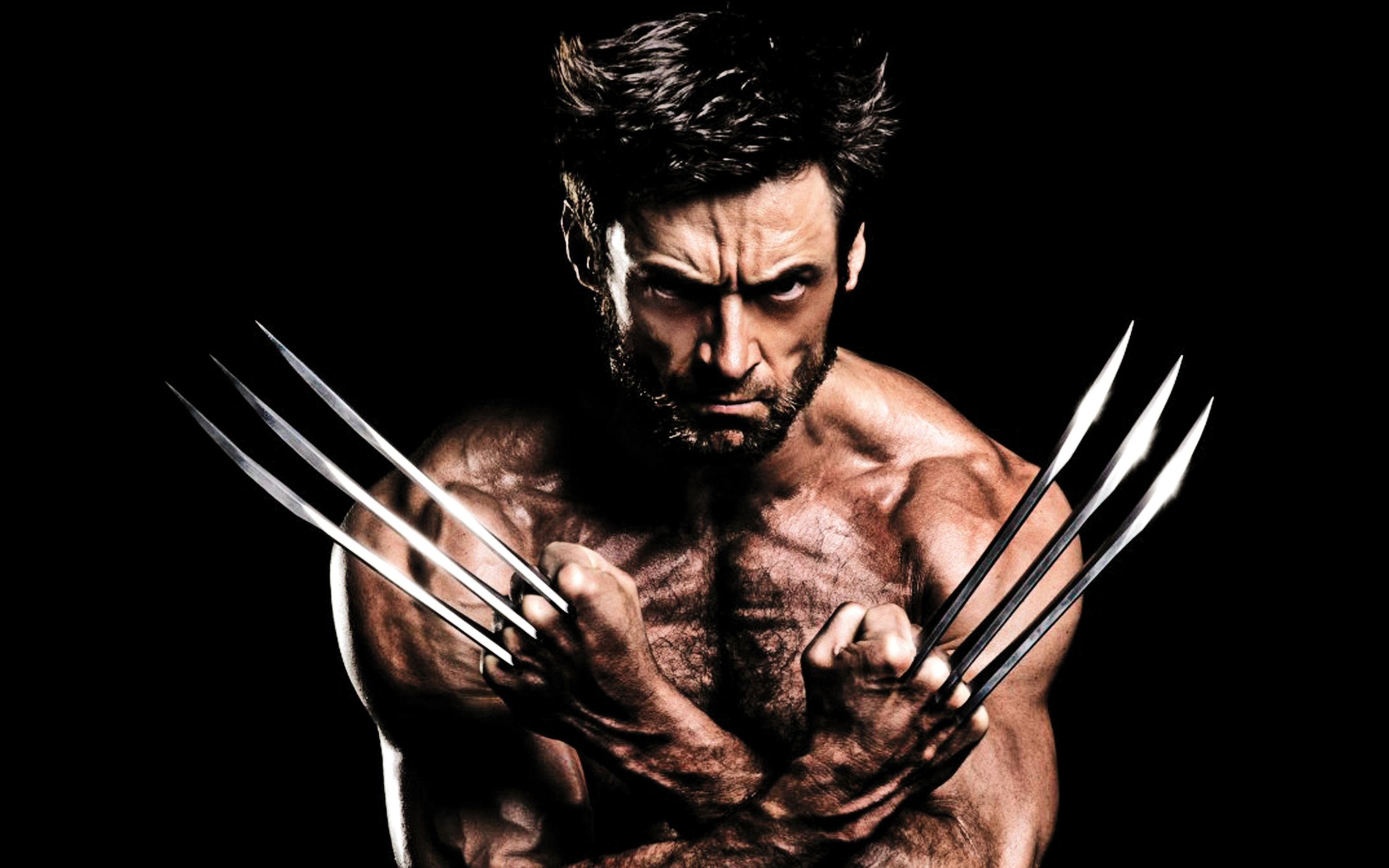 Download free HD 2013 The Wolverine Wide Wallpaper, image