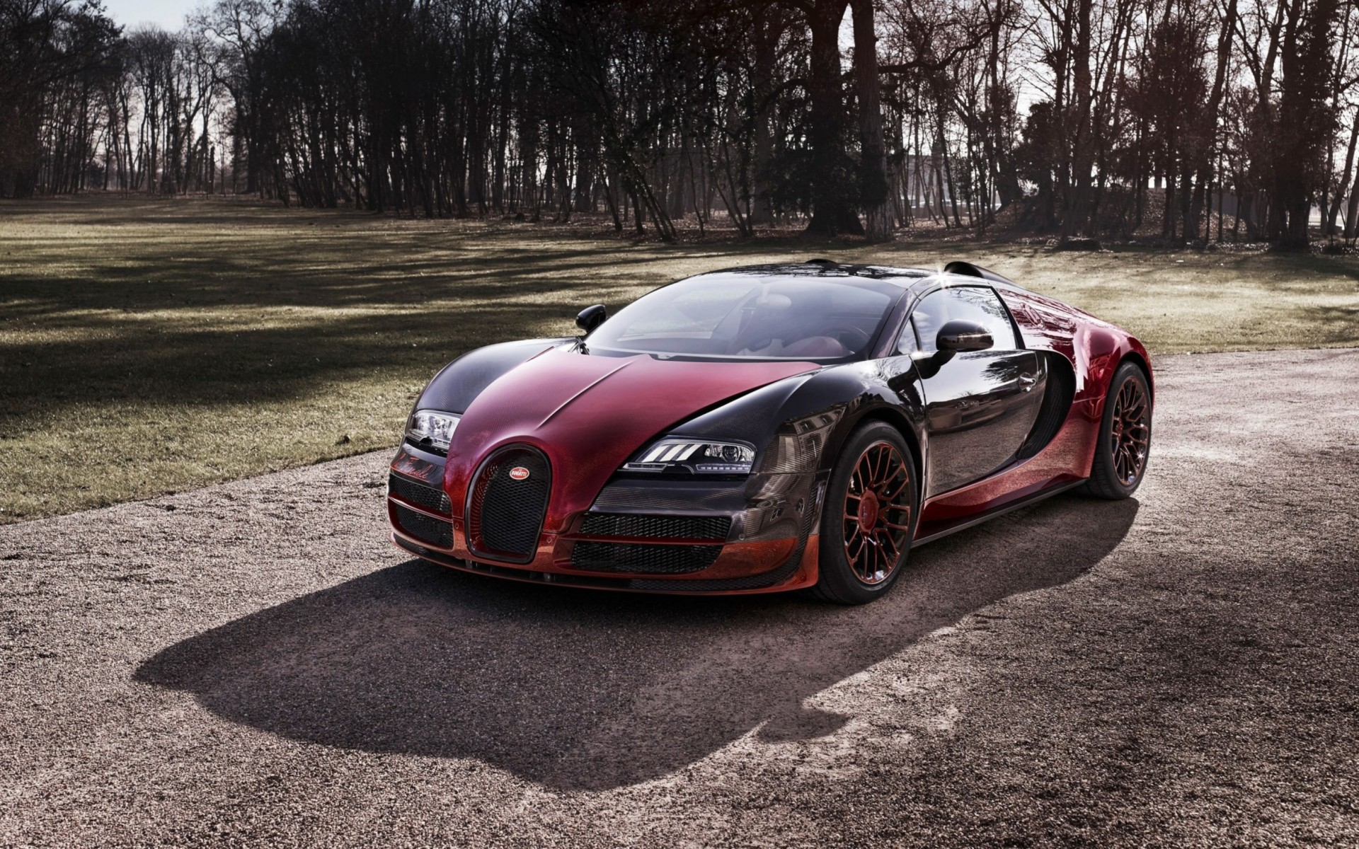 2015 Bugatti Veyron Grand Sport Vitesse La Finale Wide Wallpaper
