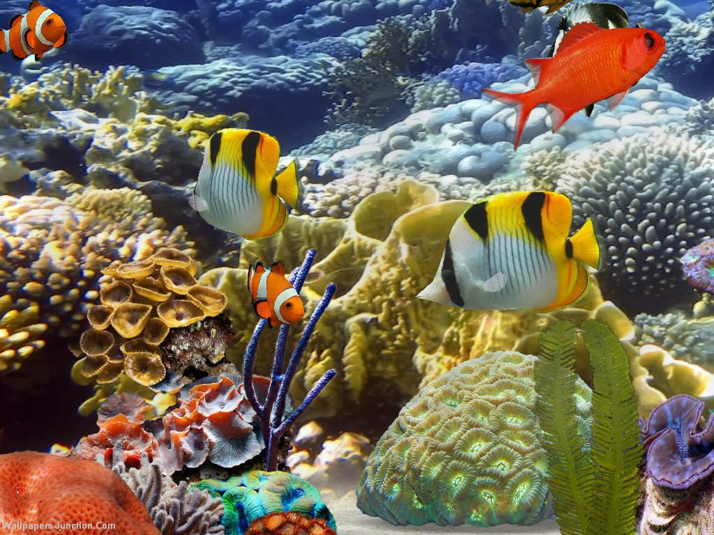 Download free HD 3D Aquarium Desktop Background Wallpaper, image