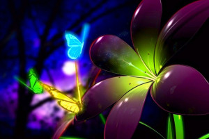 3d Flower For Android Wallpaper