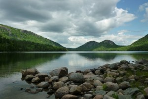 Acadia National Park Wildlife Wallpaper
