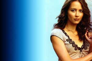 Download Actress Amy Acker  Wallpaper Free Wallpaper on dailyhdwallpaper.com
