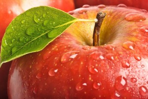 Download Apple Macro Pack Wallpaper Free Wallpaper on dailyhdwallpaper.com