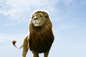 Download Aslan In Narnia Dawn Treader Wide Wallpaper Free Wallpaper on dailyhdwallpaper.com