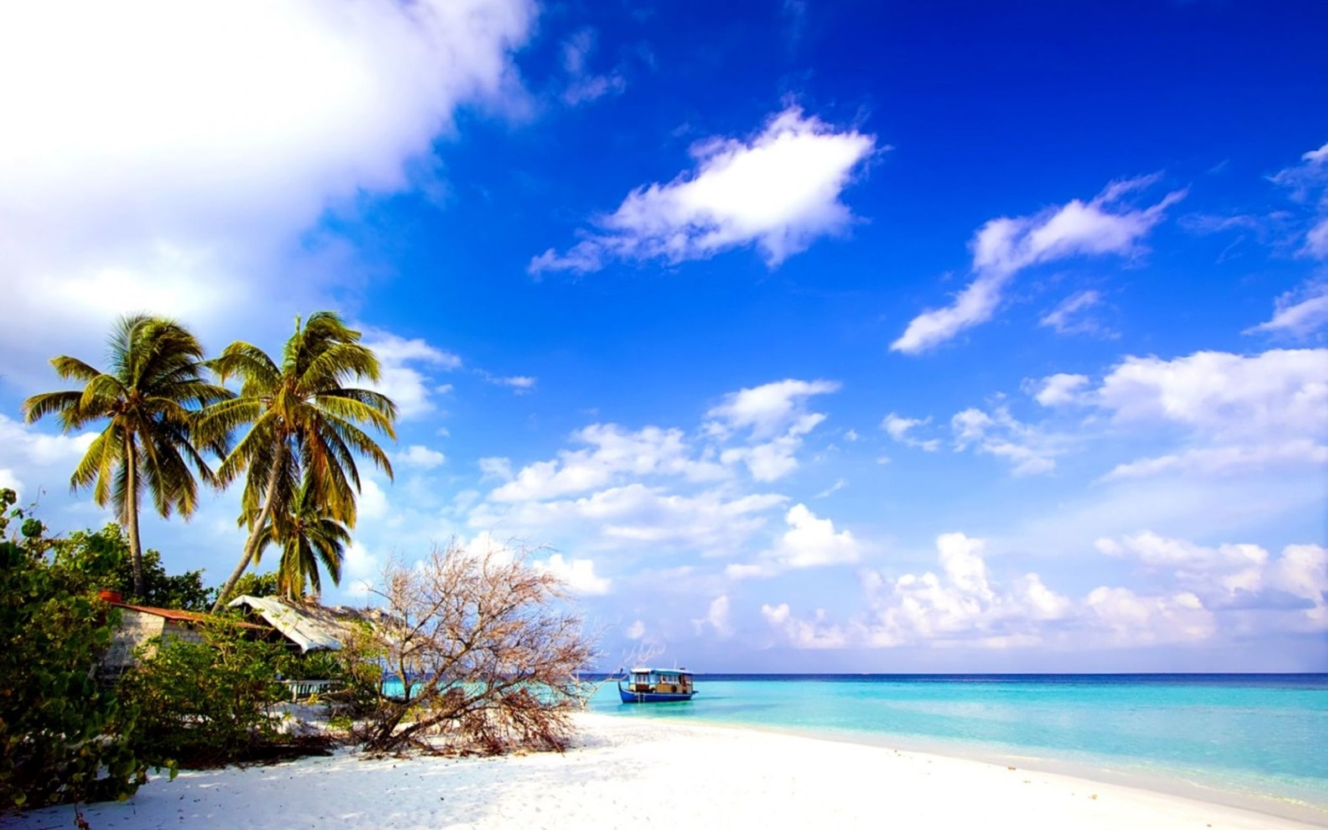 Beach Blue Sky PC Wallpaper