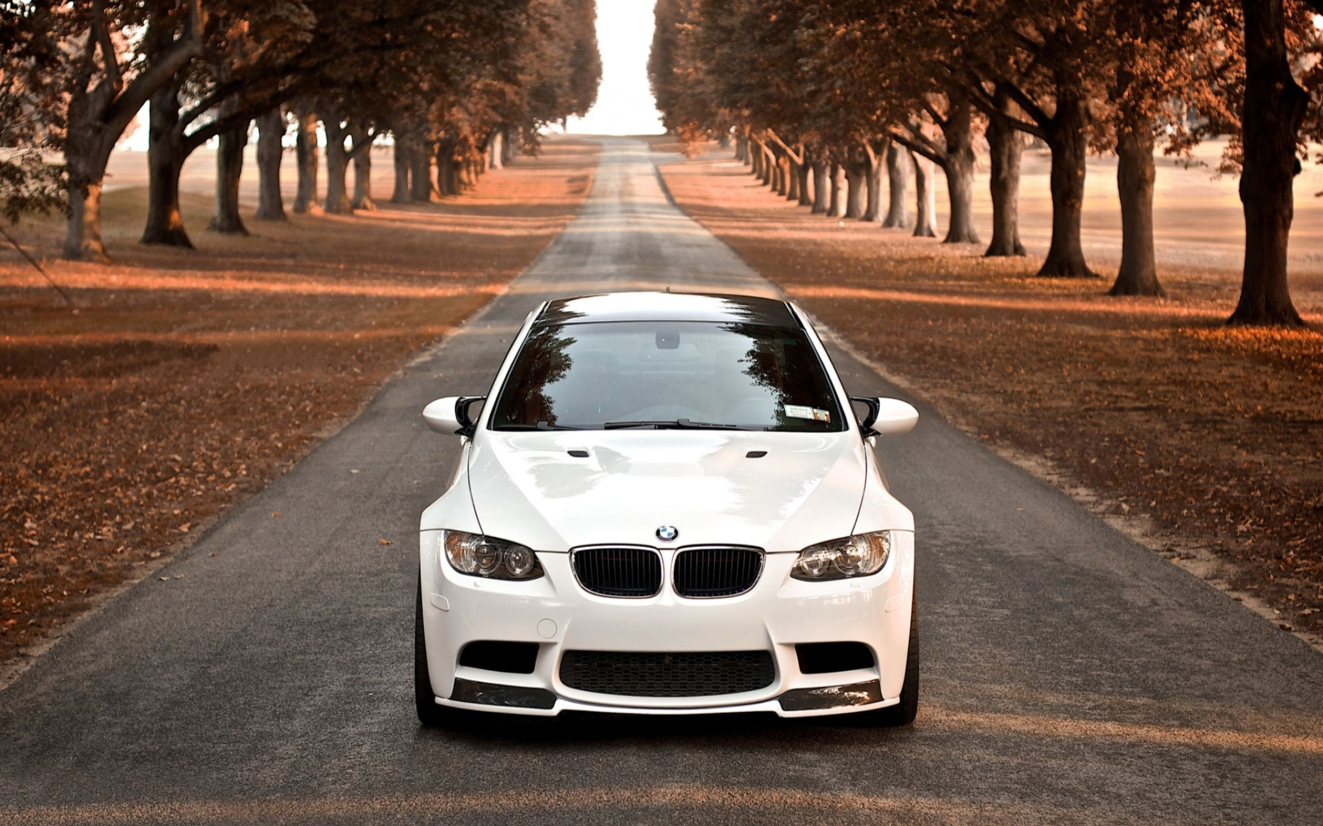 Download free HD BMW M3 Wallpaper, image