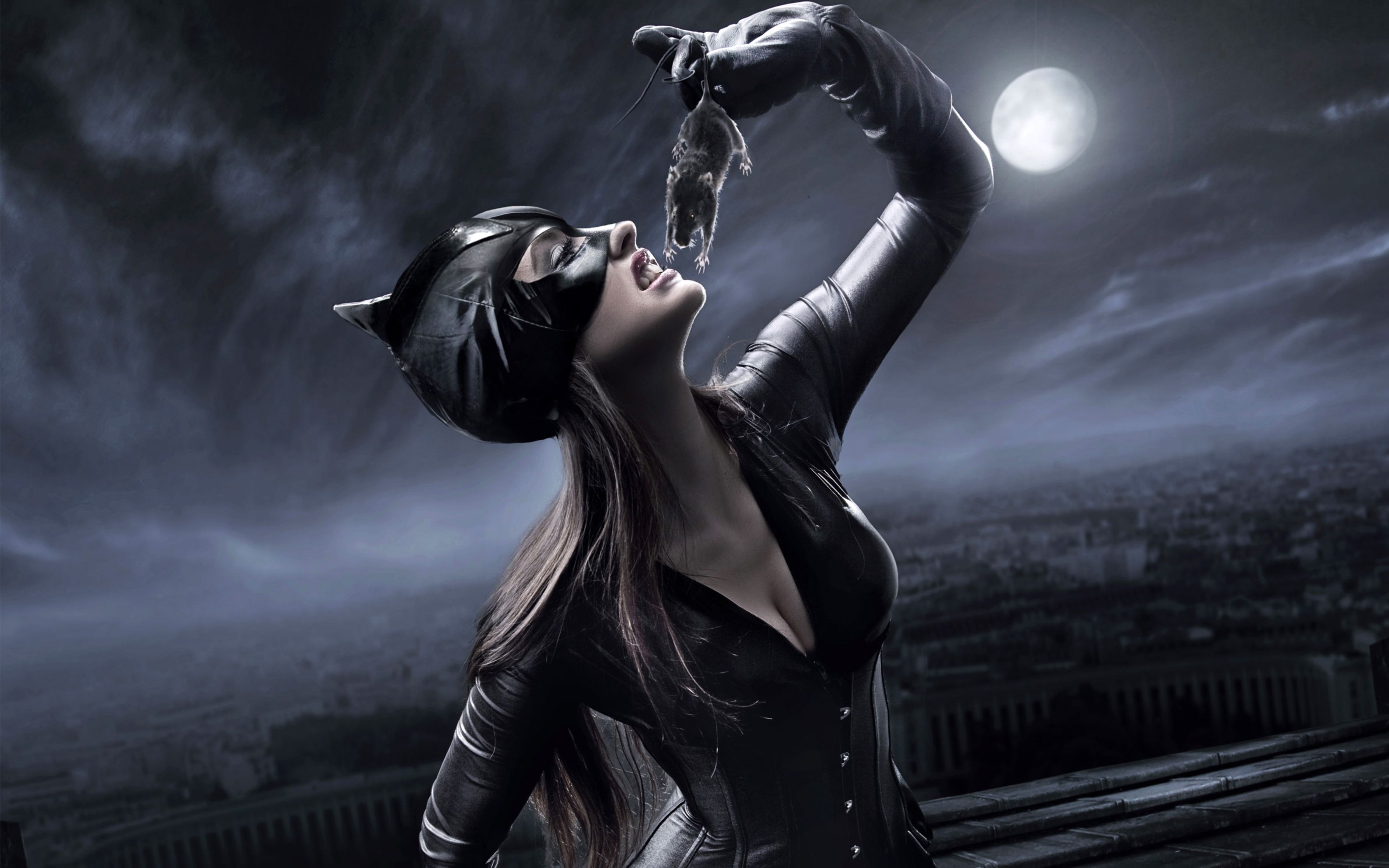 Download free HD Catwoman Concept Wide Wallpaper, image