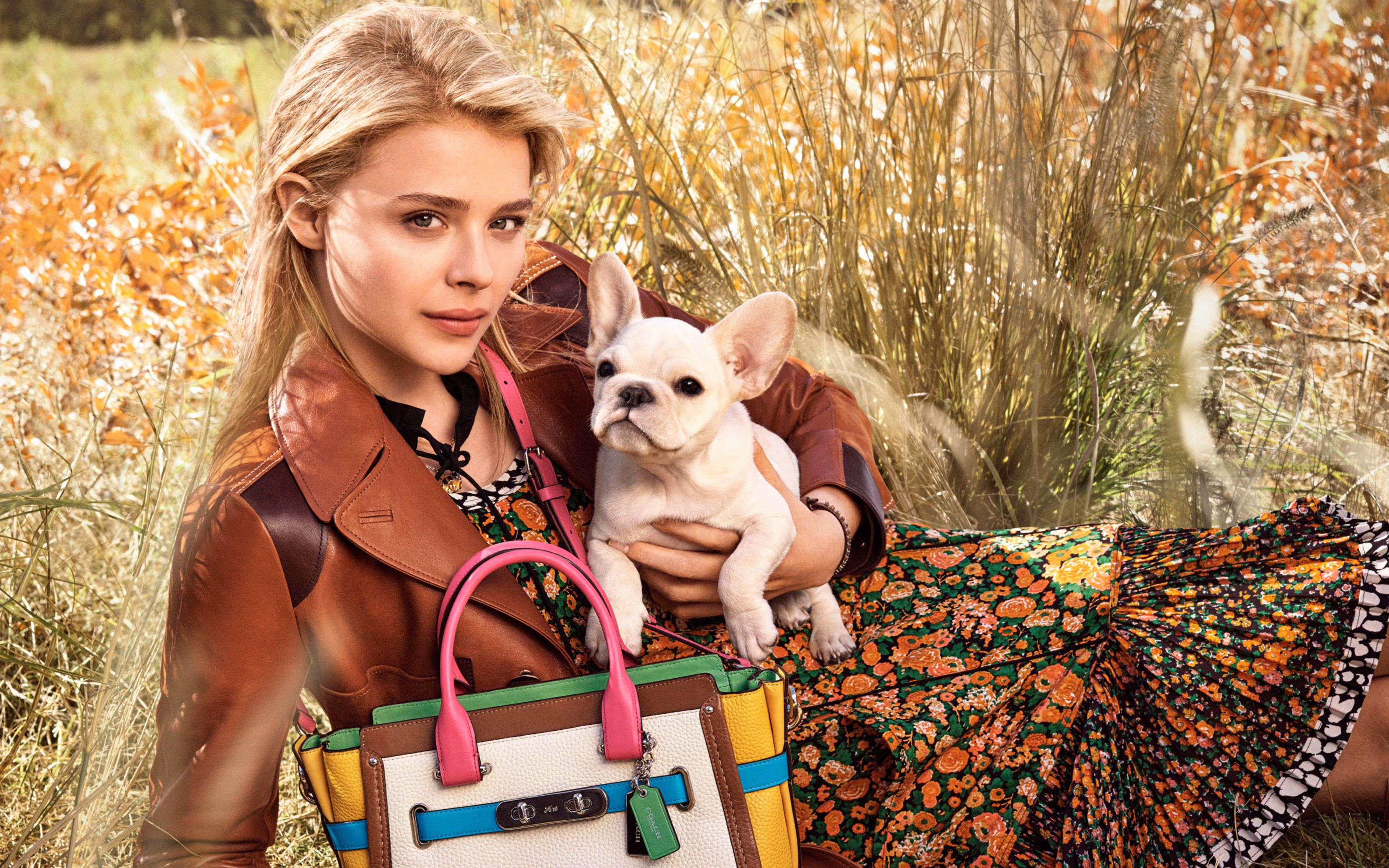 Download free HD Chloe Moretz 56 Wide Wallpaper, image