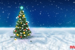 Christmas Tree Snow Sky Wide Wallpaper