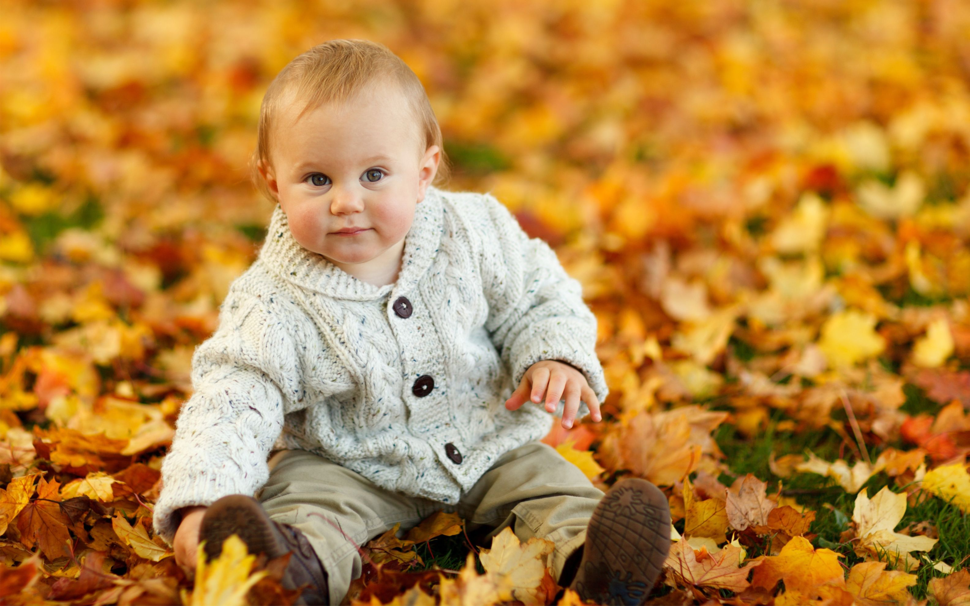 Download free HD Cute Baby Boy Autumn Leaves Wide Wallpaper, image