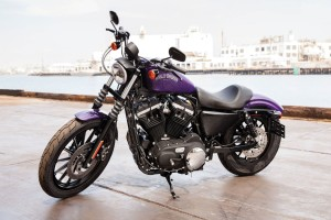 Download Davidson Sportster 883n Iron Wallpaper Free Wallpaper on dailyhdwallpaper.com