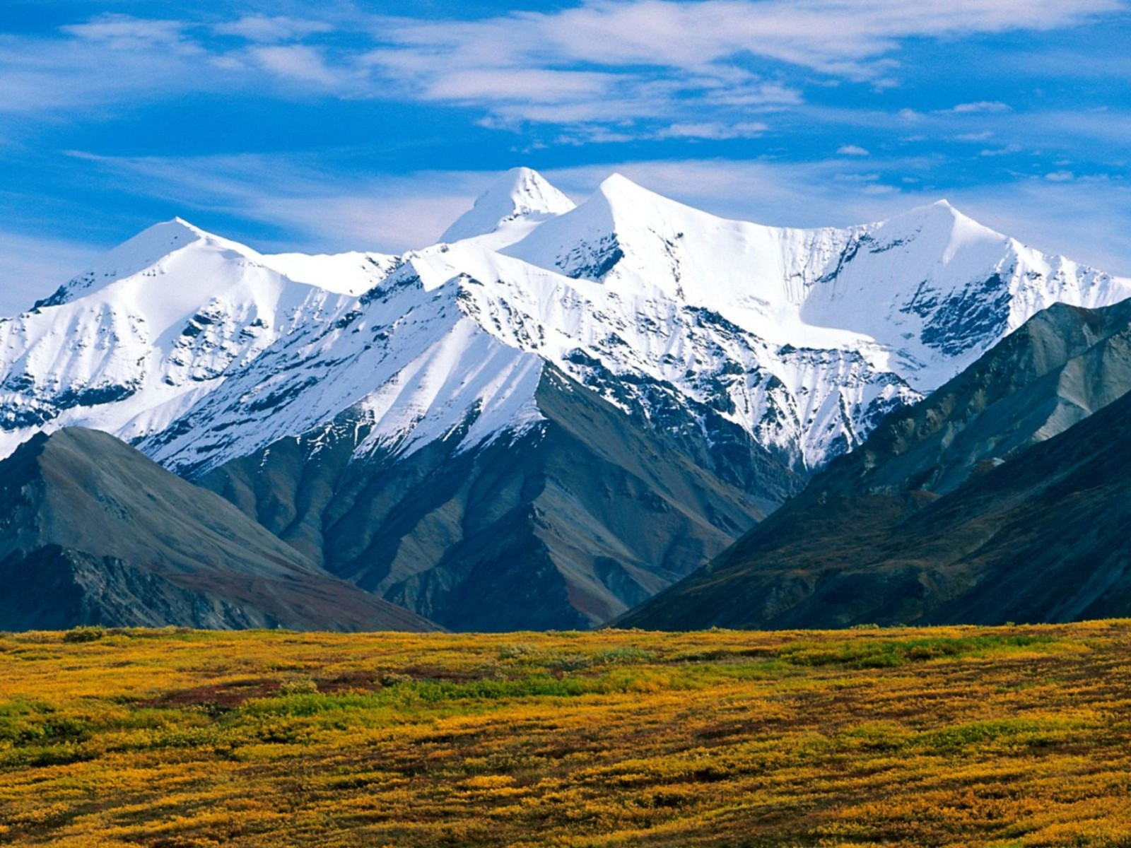 Denali National Park Alaska Normal Wallpaper