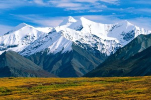 Download Denali National Park Alaska Normal Wallpaper Free Wallpaper on dailyhdwallpaper.com