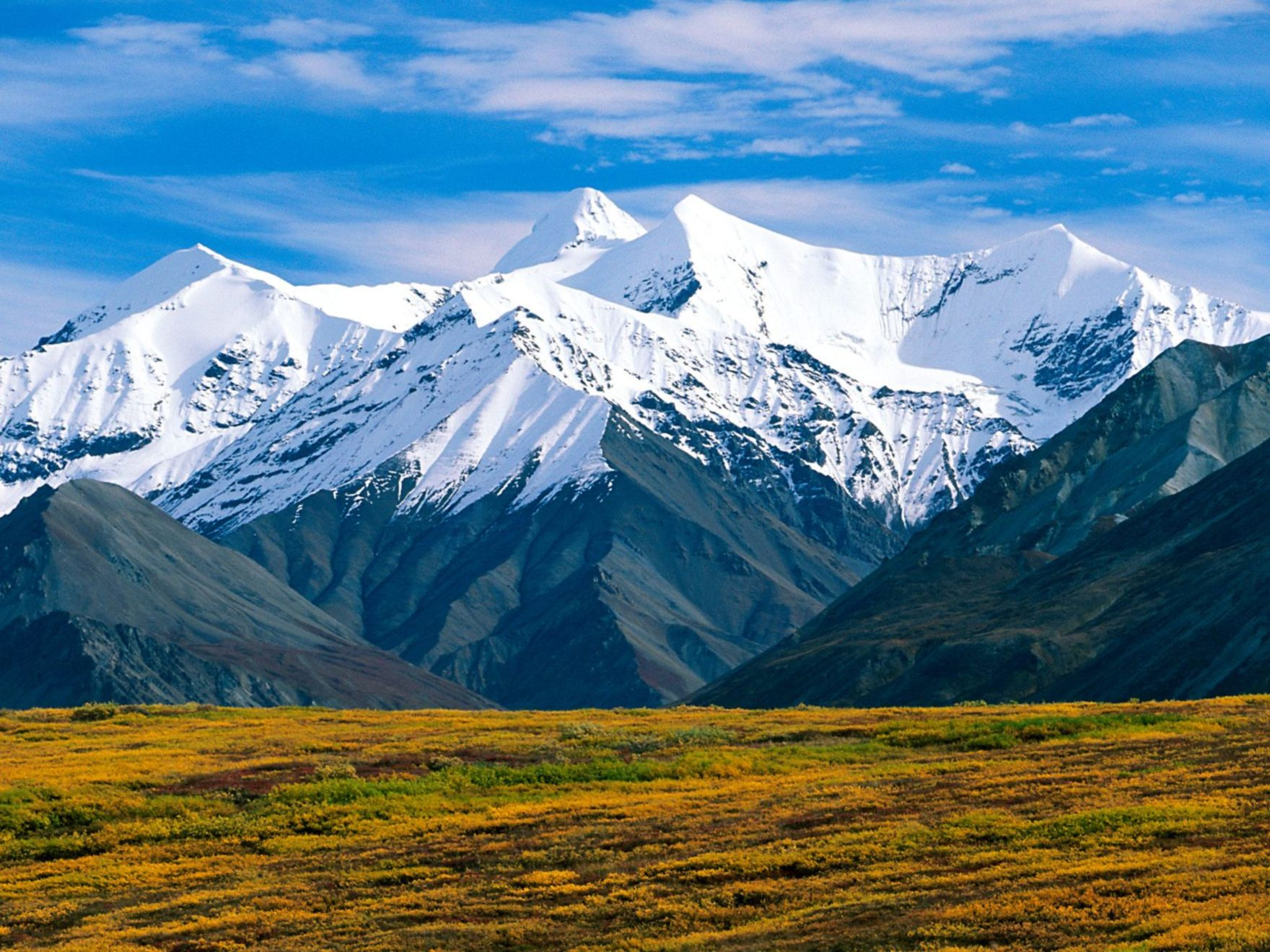 Download free HD Denali National Park Alaska Normal Wallpaper, image