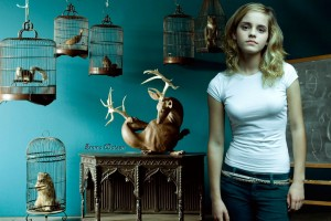 Download Emma Watson HD Widescreen Wide Wallpaper Free Wallpaper on dailyhdwallpaper.com
