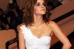Download Emma Watson Metropolitan Muesum Normal5.4 Wallpaper Free Wallpaper on dailyhdwallpaper.com