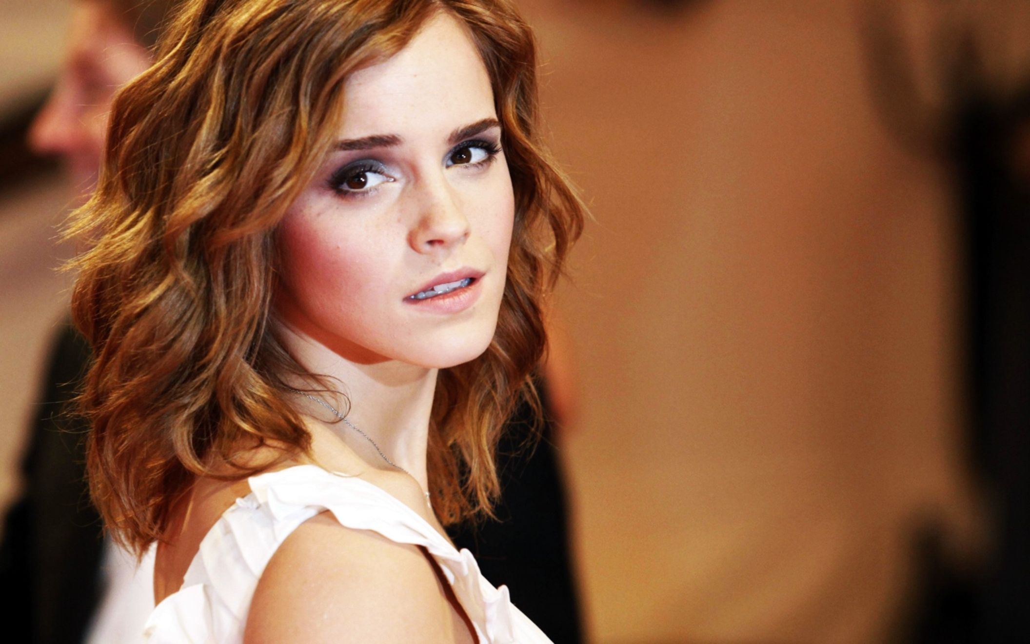 Download free HD Emma Watson at Metropolitan Muesum 2010 Wide Wallpaper, image