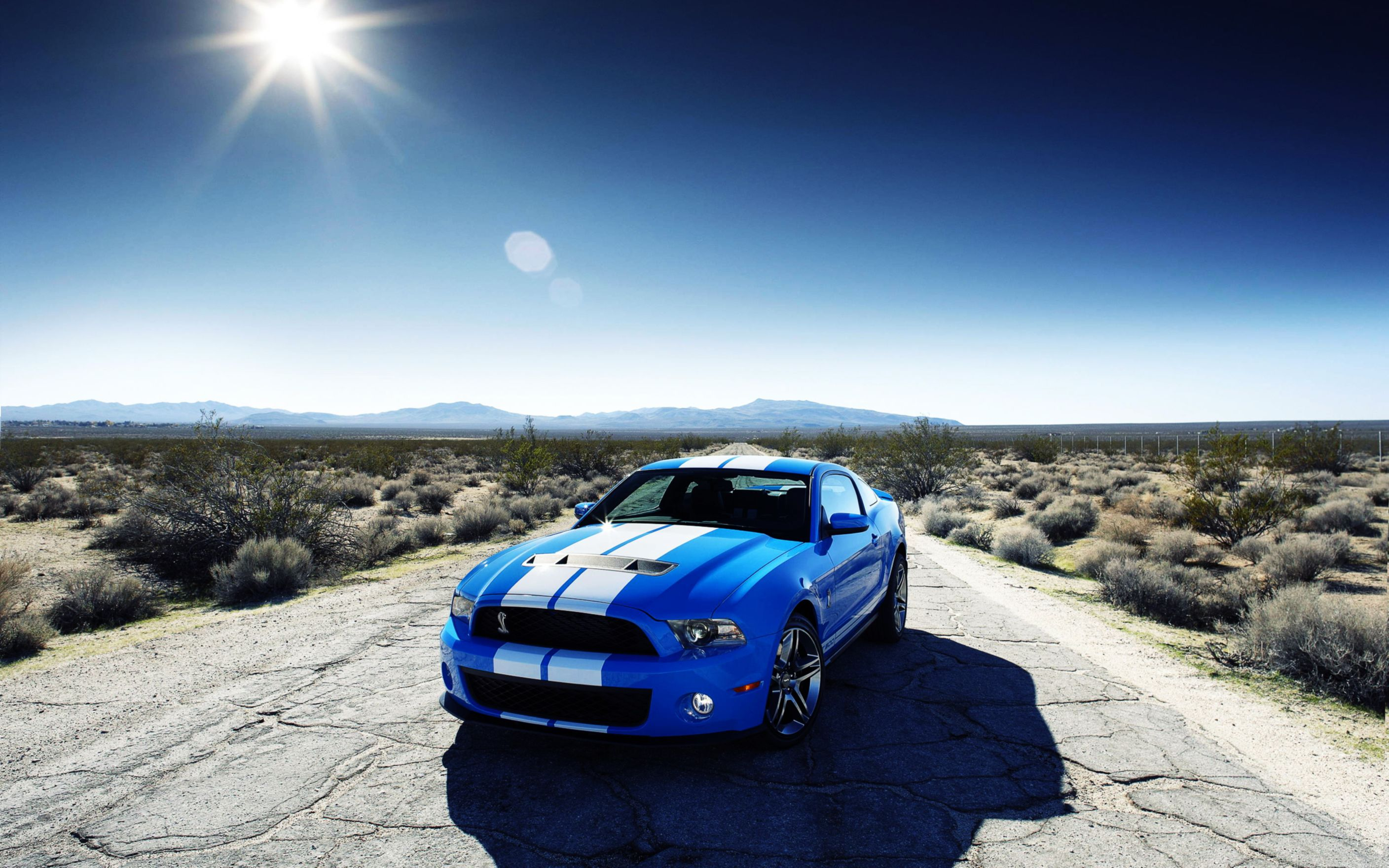 Download free HD Ford Shelby Gt500 Car Wide Wallpaper, image