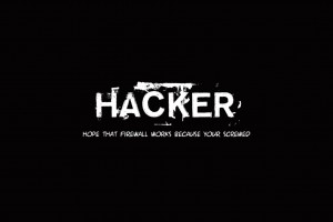 Download Hacker Funny HD Wallpaper Free Wallpaper on dailyhdwallpaper.com
