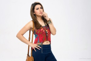 Download Hansika Motwani 2016 Wide Wallpaper Free Wallpaper on dailyhdwallpaper.com