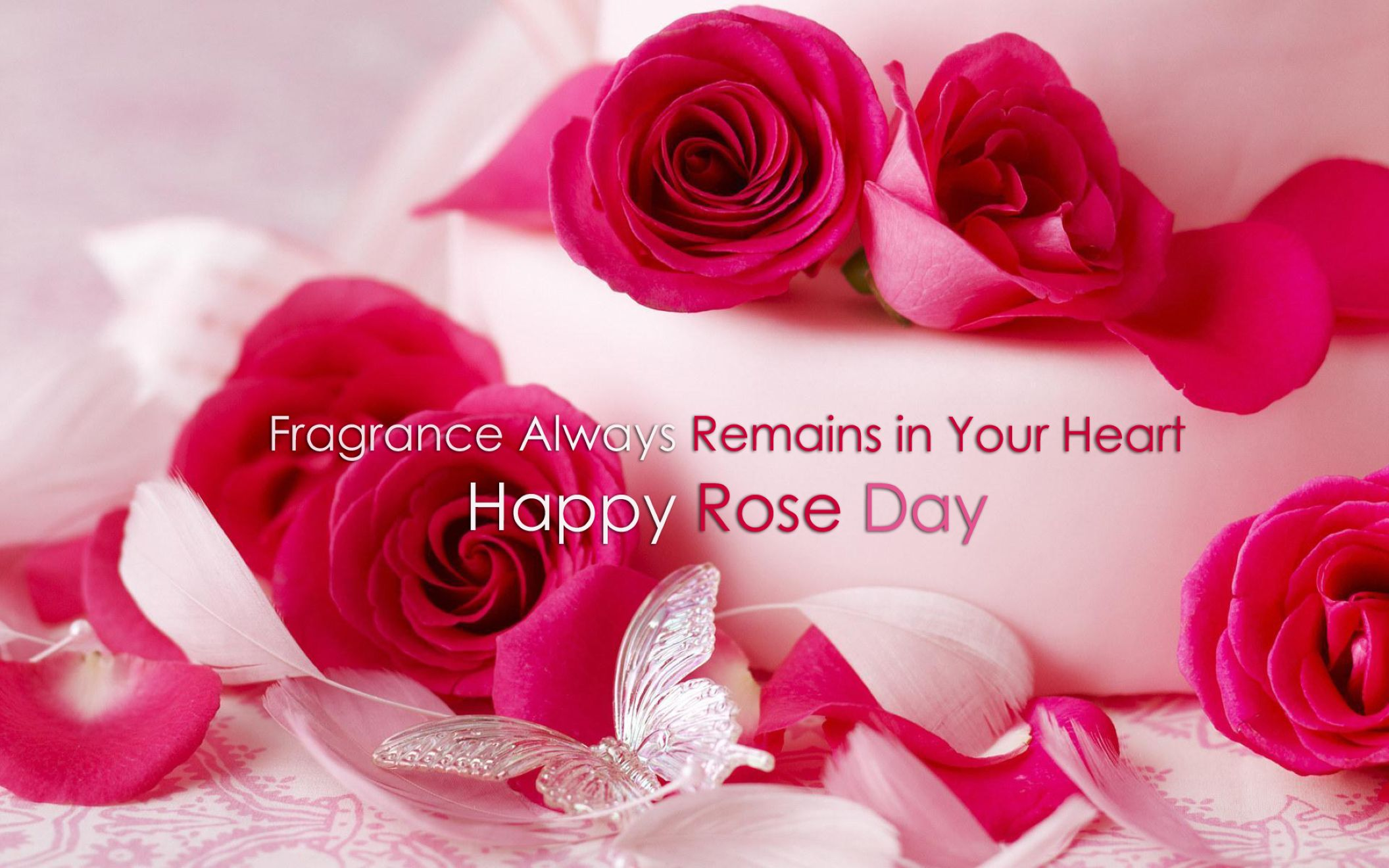 Happy Rose Day 2016 Red With Love Quotes Wallpaper