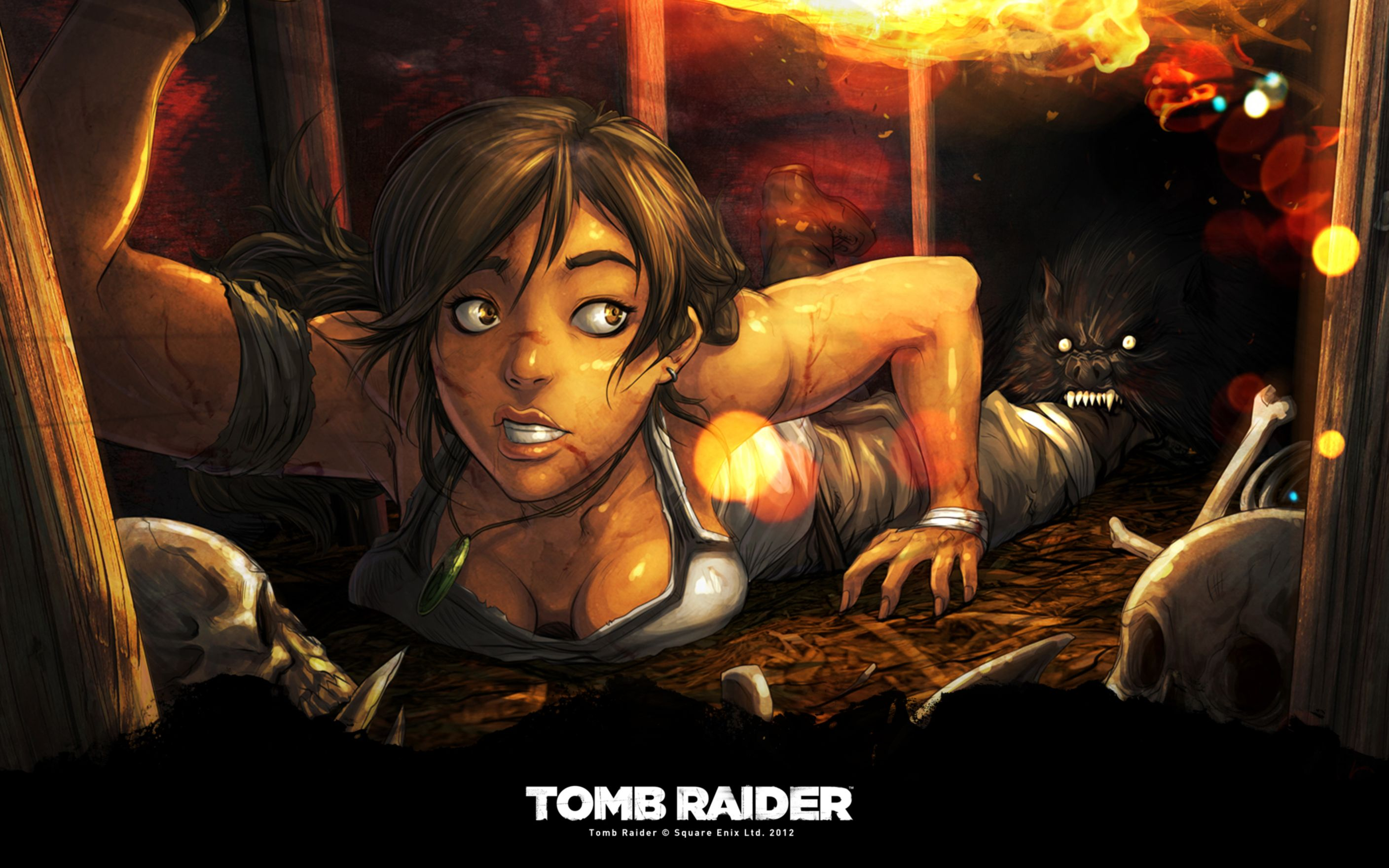 Download free HD New Tomb Raider Art Wide Wallpaper, image