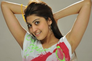 Download Pranitha Subhash Actress HD Wallpaper Free Wallpaper on dailyhdwallpaper.com