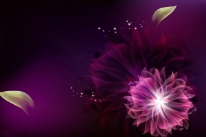 Purple Abstract Beautiful Flower Art  Wallpaper