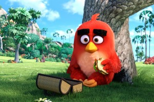 Red Angry Birds Movie HD Wallpaper