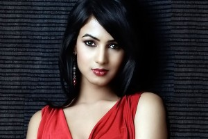 Download Sonal Chauhan Widescreen Wallpaper Free Wallpaper on dailyhdwallpaper.com