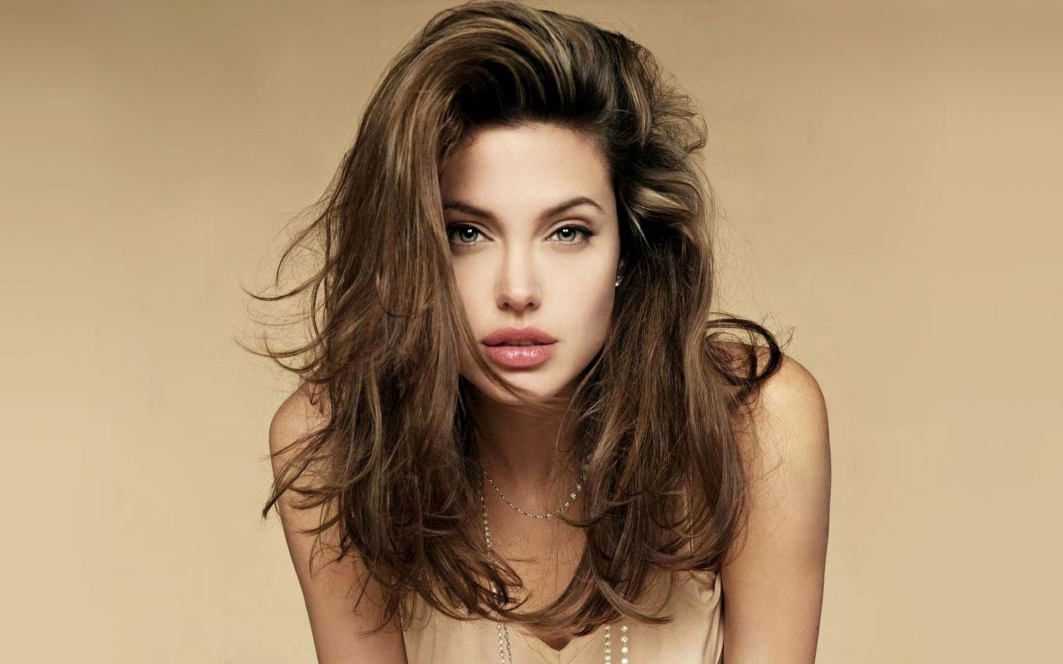 Download free HD Sweet Angelina Jolie HD Wallpaper, image