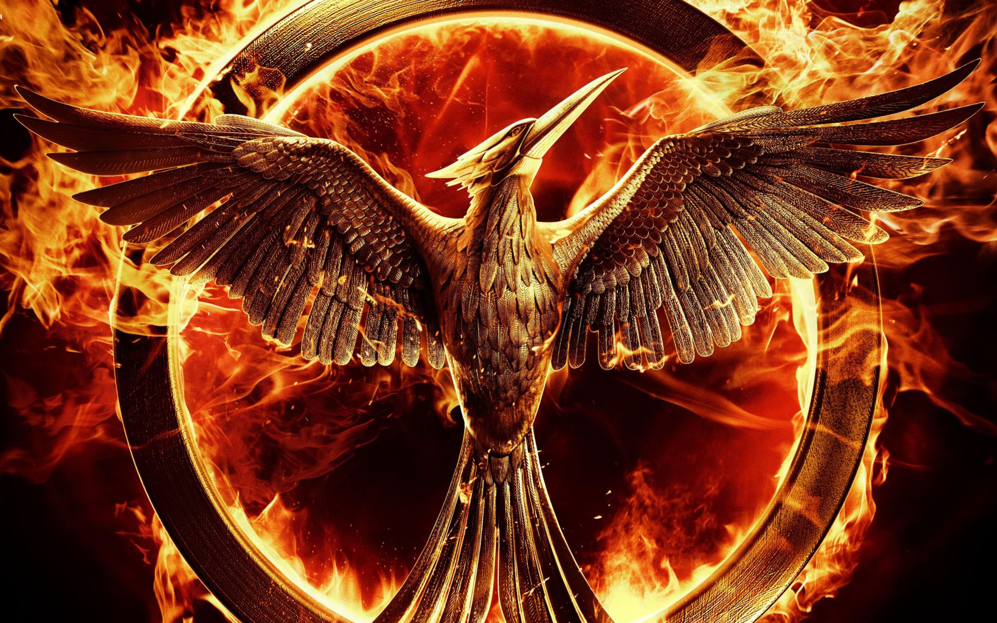 Download free HD The Hunger Games Mockingjay Wide Wallpaper, image